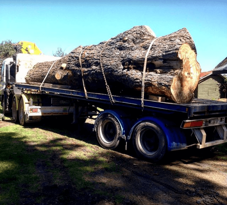 flat bed semi trailer, ARBORIST SERVICES