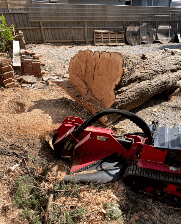 toro, toro stump grinder, stump grinding