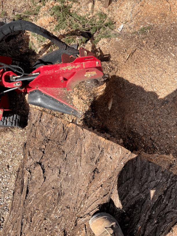 toro stx stump grinder, stum grinding