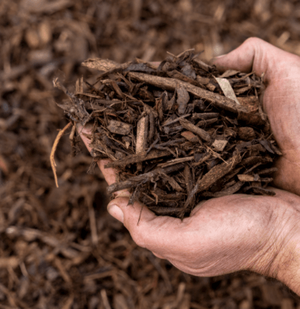 handful of wood chips, mulch in hands