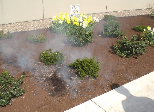 mulch combusting